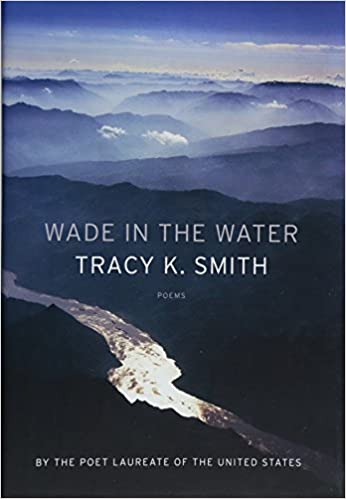 cover image, wade in the water