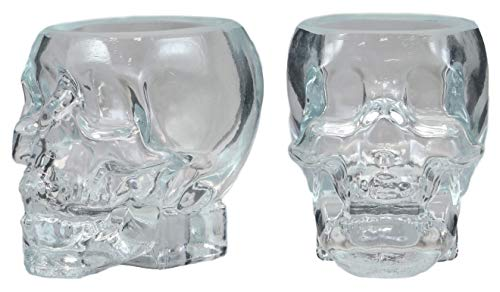 Ebros Gift Set of 2 Clear Translucent Acrylic Skeleton Skull Face Whisky Vodka Scotch Liquor Shot Glass Shooters Alcoholic Beverage Glasses Halloween Skulls Macabre Pirate Fantasy Underworld Theme -