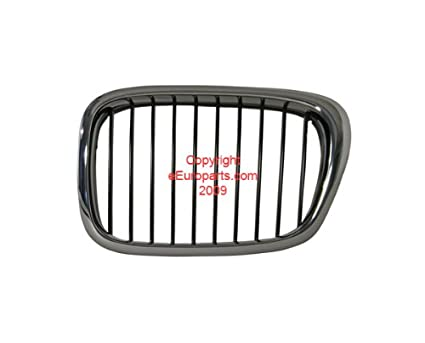 37c39ca1146 Amazon.com  BMW e39 (00-03) Grille Kidney grill (L) Black GENUINE ...