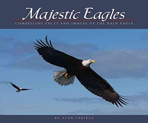 Bald Eagle Facts - [(Majestic Eagles : Compelling Facts and Images of the Bald Eagle)] [By (author) Stan Tekiela] published on (April, 2007)