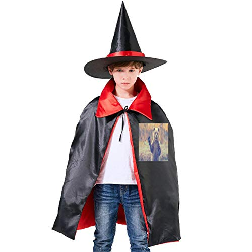 One of my Greeting Bears Halloween Shawl and Witch Hat for Children Kids Red for $<!--$13.00-->