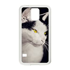 Animal Series Cute Cat Design Hot White For Case Iphone 5/5S Cover With Best Hard By All My Dreams