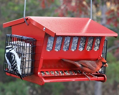 Seeds-N-More Feeder For Birds - 2.5Gallon - Red by Heritage Farms