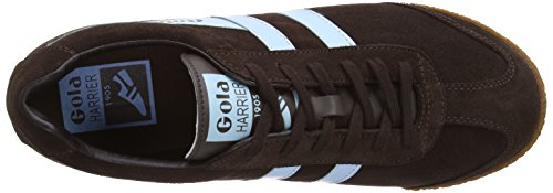 Pale Harrier Dark Men's Sneaker Blue Brown Gola Fashion waAY7nxw