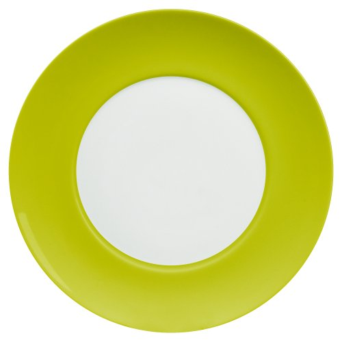 Waechtersbach Uno Dinner Plates, Mint, Set of 4, used for sale  Delivered anywhere in USA
