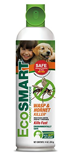 amazon com ecosmart organic wasp and hornet killer 14 oz aerosol