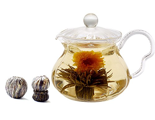 Teapot Duo - 8