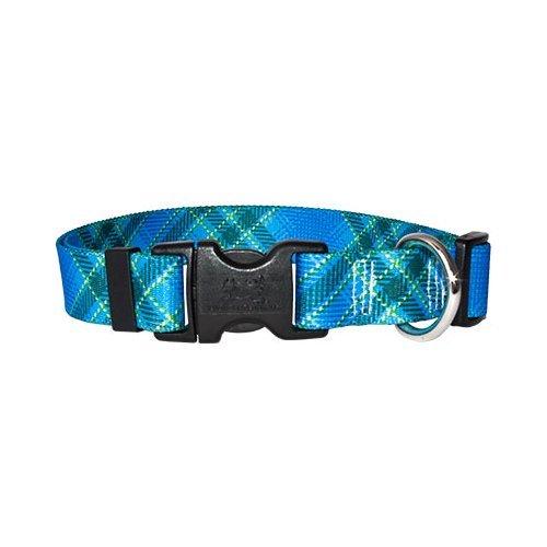 Blue Kilt Dog Collar - Size Teacup 4