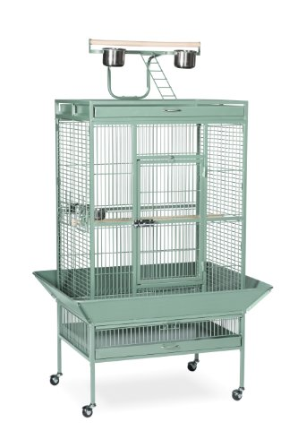 Prevue Pet Products Wrought Iron Select Bird Cage 3153SAG...
