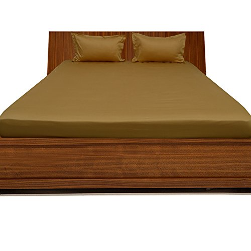 Relaxare Queen XL 300TC 100% Egyptian Cotton Gold Solid 3PCs