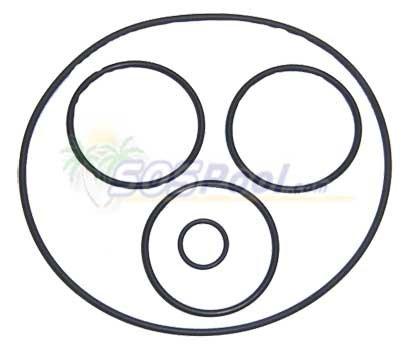 Pentair Purex SMBW 2000 Filter Rotor O-Ring Kit -