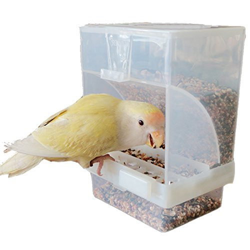 Parrot Integrated Automatic Bird Feeder No Mess Pet Feeder Seed Food Container Perch Cage Accessories for Budgerigar Canary Cockatiel Finch Parakeet Green Cheek Conures Parrotlets Lovebirds (Big)