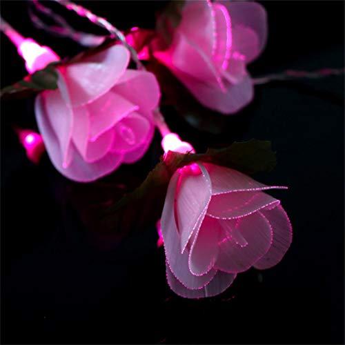 Miklan Pink Fiber Rose Flower String Lights,5Ft 10LED Warm White Romantic Wedding Flower Decoration Lamp -Listd for Indoor/Outdoor Patio Halloween Thanksgiving Christmas Birthday Party Wedding Decor]()