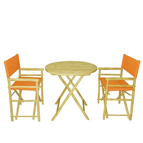 Phat Tommy Indoor and Outdoor Foldable Bistro Set with Ro...