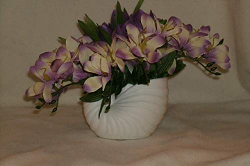 The Unique Gift Boutique-Freesia and Crocus Nautilus Shell Silk Cloth Floral Arrangement ()