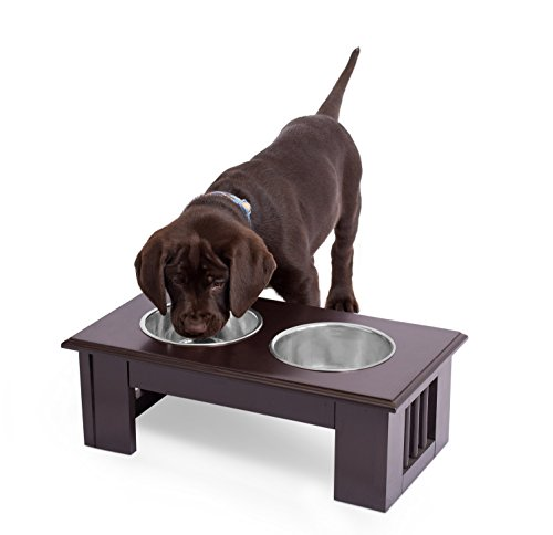 (Internet's Best Traditional Elevated Pet Feeder | 2 Small Dog Food Water Bowls | Designer Decorative Raised Stand with Double Stainless Steel Bowls | Espresso)