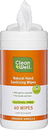 CleanWell Natural Hand Sanitizing Wipes Canister Orange Vanilla 40 Count