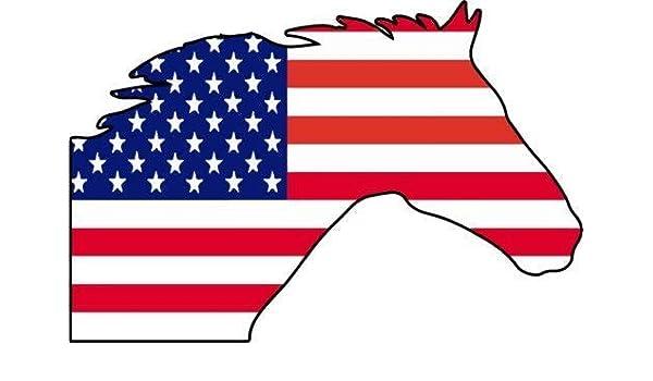 Sticker adhesive car vinyl flag card wisconsin usa american