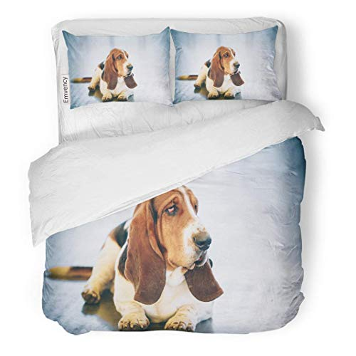 Dog Print Bedding