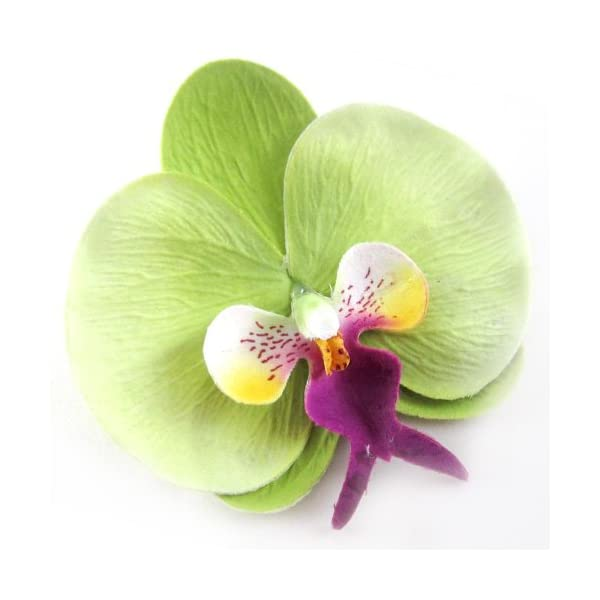10-Green-Phalaenopsis-Orchid-Silk-Flower-Heads-375-Artificial-Flowers-Heads-Fabric-Floral-Supplies-Wholesale-Lot-for-Wedding-Flowers-Accessories-Make-Bridal-Hair-Clips-Headbands-Dress