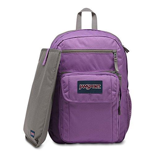 e06388e55c86 JanSport JanSport Digital Student Laptop Backpack - Vivid Lilac