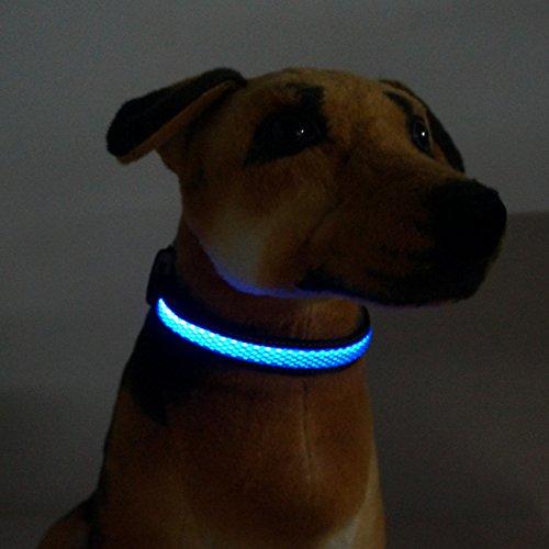 Rechargeable Flashing MASBRILL Dog e lites Light Up