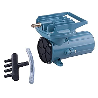 DC 12V Permanent Magnetic Air Compressor Pump for Fish Pond Hydroponics Aquaculture Oxygen 38L/Min …