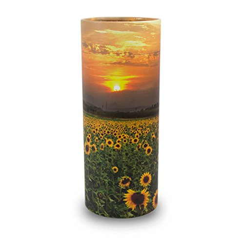 (OneWorld Memorials Sunflower Fields Paper Biodegradable Urn for Spreading Ashes - Large - Holds Up to 200 Cubic Inches of Ashes - Yellow Green Urns for Scattering Ashes - Engraving Sold Separately)