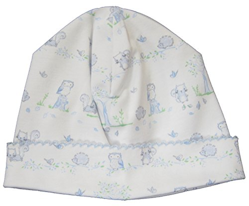 (Kissy Kissy Baby-Boys Infant Nature's Nursery Print Hat-White With Blue-Small)