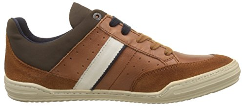 Basses Joran Camel Kickers Baskets Marron Homme wa08wxEHq
