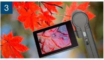 3.0'' LCD Digital Mobile Microscope/maginifier with Build-in Screen,500x by WIN.MAX (Image #5)