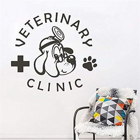 Handaxian Servicios Veterinarios para Mascotas Medicina ...