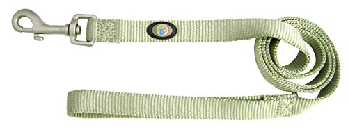 Hamilton 3/4-Inch Single Thick Nylon Lead with Swivel Snap, 4-Feet, Sage Green with Brushed Hardware
