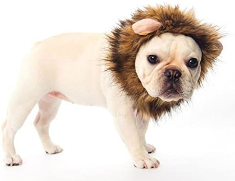 DOGLOVEIT Lion Mane for Cat Appreal, Pet Costume Lion Wig for Dog Cat Halloween Pet Dress up with Ears 16