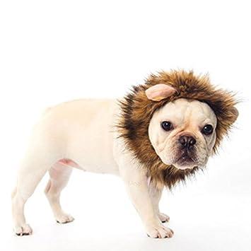 Disfraz de león para mascota, peluca para perro, gato, Halloween, vestido con