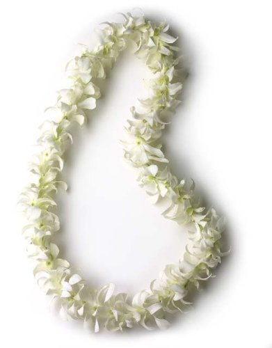 Hawaiian Lei - Fresh Single Strand Orchid Lei - White