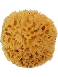 """Natural Sea Wool Sponge 4-5"""" by Spa Destinations Amazing Natural Renewable Resource""""Creating The In Perfect Bath and..."""