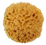 Natural Sea Wool Sponge 4-5'' by Spa Destinations Amazing Natural Renewable Resource''Creating The In Perfect Bath and Shower Experience'' 100% Satisfaction Guarantee!