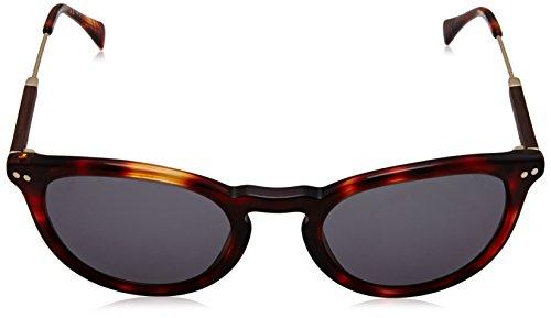 Wood Sonnenbrille Gold Havana Tommy S 1198 TH Hilfiger cnSpC