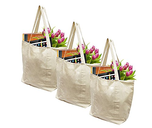 Earthwise Reusable Grocery Bags X-Large 100% Cotton Canvas Shopping Beach Cloth Tote (3 ()