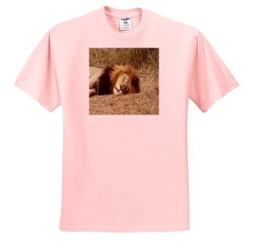 Angelique Cajam Big Cat Safari - South African Sleeping Lion headshot - T-Shirts - Adult Light-Pink-T-Shirt Small