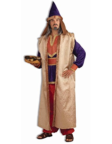 Forum Novelties Men's Deluxe Garnet Wise Man Costume, Multi, One Size