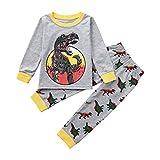 Little Boy Dinosaur Pajamas Sets,Jchen(TM) Toddler Kids Little Boy Girl Long Sleeve Dinosaur Print Tops Pants Homewear Sleepwear Outfits 1-5 Y (Age: 2-3 Years Old)