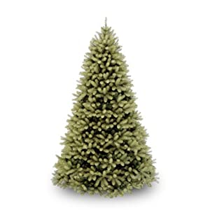 National Tree Downswept Douglas Fir Tree 106