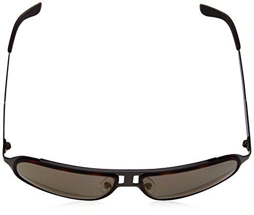 Carrera S Hvn 101 Copper Speckled Marrón CARRERA Brw Sonnenbrille Grey Brw rRtwr4