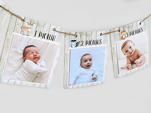 Woodland First Birthday Monthly Photo Banner, Fits 4x4 photos, New Born - 12 months