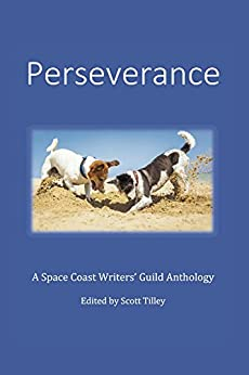 Download for free Perseverance: A Space Coast Writers' Guild Anthology