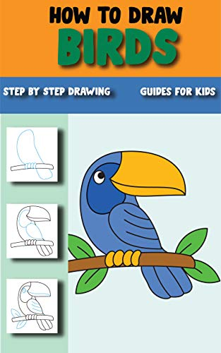 How To Draw Birds The Step By Step Simple Way To Draw Birds