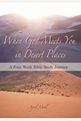 When God Meets You in Desert Places Paperback