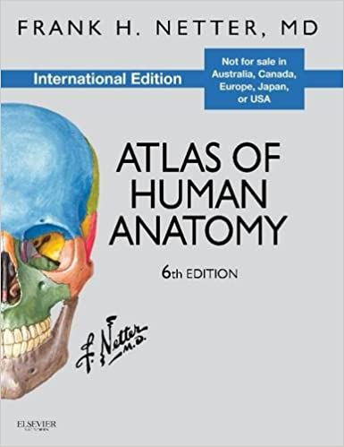 Buy Atlas of Human Anatomy, International Edition (Netter Basic ...